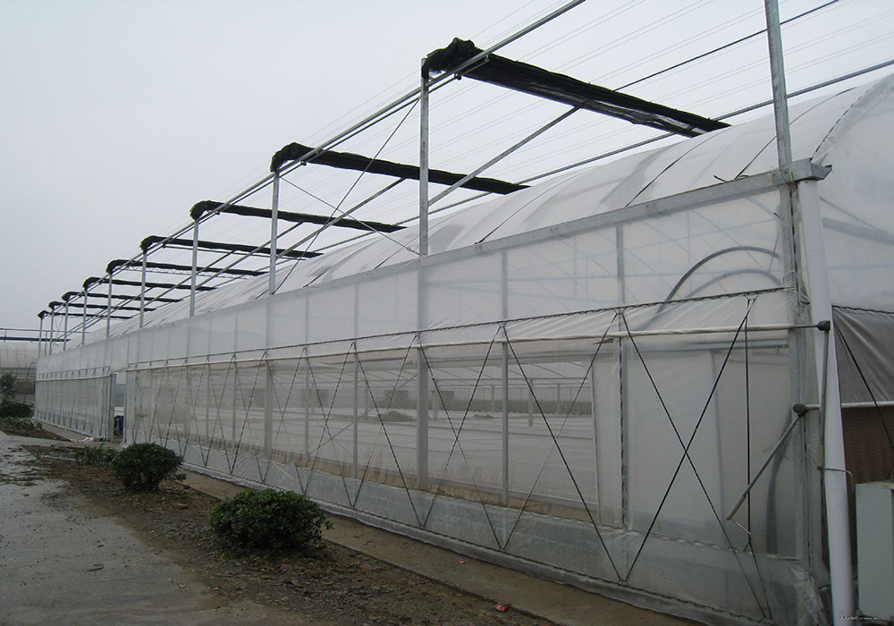 полиэтиленовая плёнка шириной 6 метров